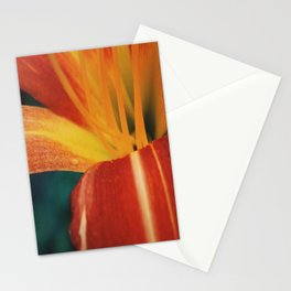 The Lily and The Ant Stationery Cards