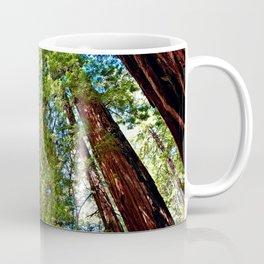 Muir Woods Study 18 Coffee Mug