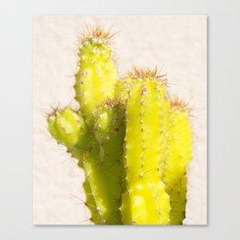 lemon cactus Canvas Print