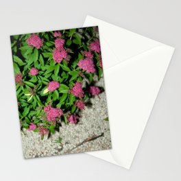 gently gentle #9 Stationery Cards