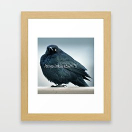Are You Looking At Me???? Framed Art Print