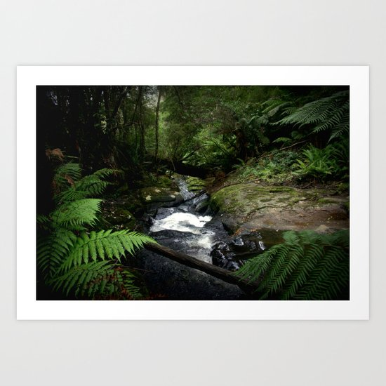 Inside the Otway Ranges Art Print