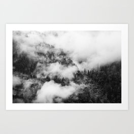 Fog Forest in Black and White – Landscape Photography Art Print