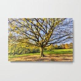 The Autumn Tree Metal Print