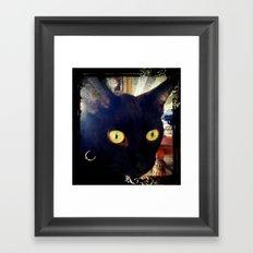 Glorified Housecat Framed Art Print