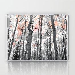 Aspen Dream Laptop & iPad Skin