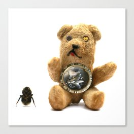 Tiny Mentalembellisher Vintage Teddy Bear with His Pet Bee & Some Fiddlebittery Canvas Print