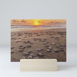 Baby Sea Turtles on beach at Sunset Mini Art Print