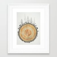 tree rings Framed Art Prints featuring Tree Rings by dreamshade
