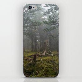 A Misty Evergreen Forest in China iPhone Skin