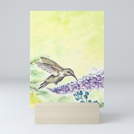 Hummingbird and Salvia Flowers Mini Art Print