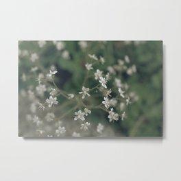 summergrass - three Metal Print
