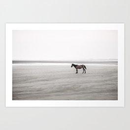 Horse a la playa Art Print