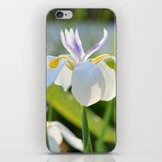 Gleamin' Iris iPhone & iPod Skin