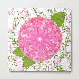 Rose Sweet Rose Metal Print