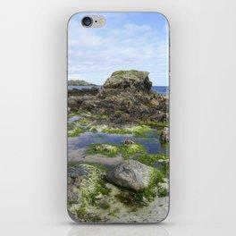 Beach on Iona iPhone Skin