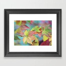 Colorful fall Framed Art Print