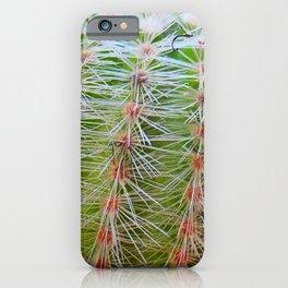 Prickly Cactus iPhone Case