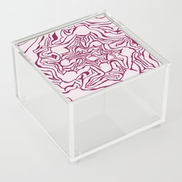 Cabbage Core Acrylic Box