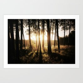 Golden hour I Art Print