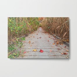 Autumn Marsh Boardwalk Metal Print