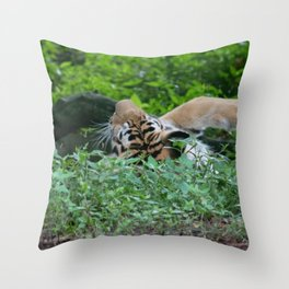 Swat the Fly Throw Pillow