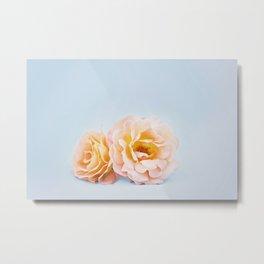 Sweet and peachy Metal Print