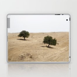 The holm oak Laptop & iPad Skin
