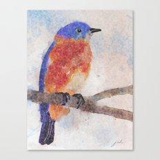 Little Bluebird Canvas Print