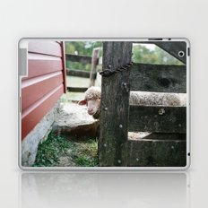 Adorable Sheep Peeking Out From Behind Fence Laptop & iPad Skin