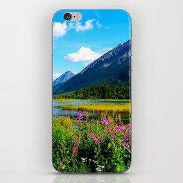 God's Country - Summer in Alaska iPhone Skin