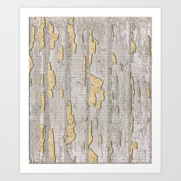 Cracked Paint Art Print