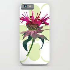 Bergamot iPhone 6s Slim Case