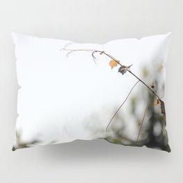 A Curling Extending Arm Pillow Sham