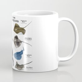 Rays of the World's Oceans Coffee Mug