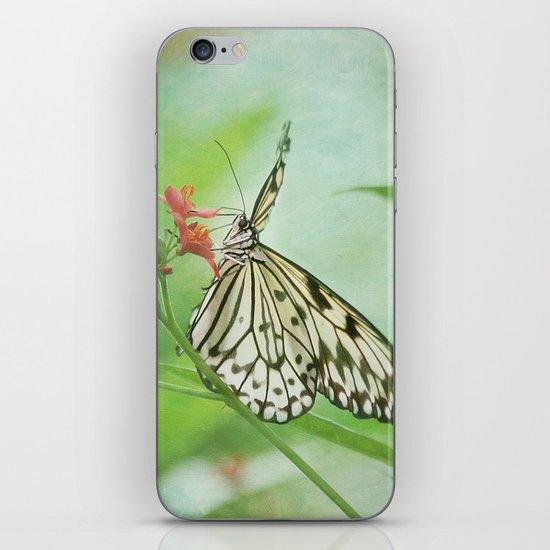 Fairy Dance iPhone & iPod Skin