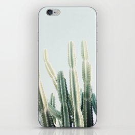 desert iPhone Skin