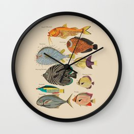 Angry Puffer Fish and Others by Louis Renard 18th century Wall Clock