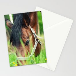 horse collection. spring Stationery Cards