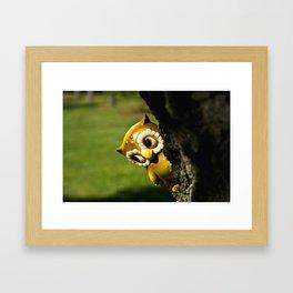 Harvey the Owl II Framed Art Print