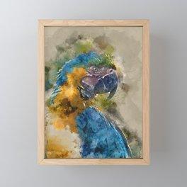 Parrot Colours Framed Mini Art Print