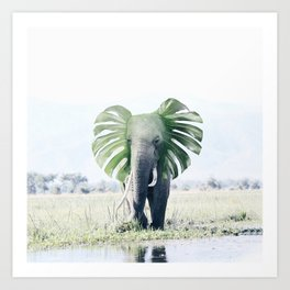 Elephant + Leaf Art Print