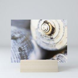 Shells Mini Art Print