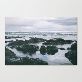 Oregon Coast XI Canvas Print