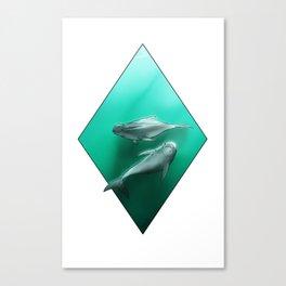 Irrawaddy Dolphin Canvas Print