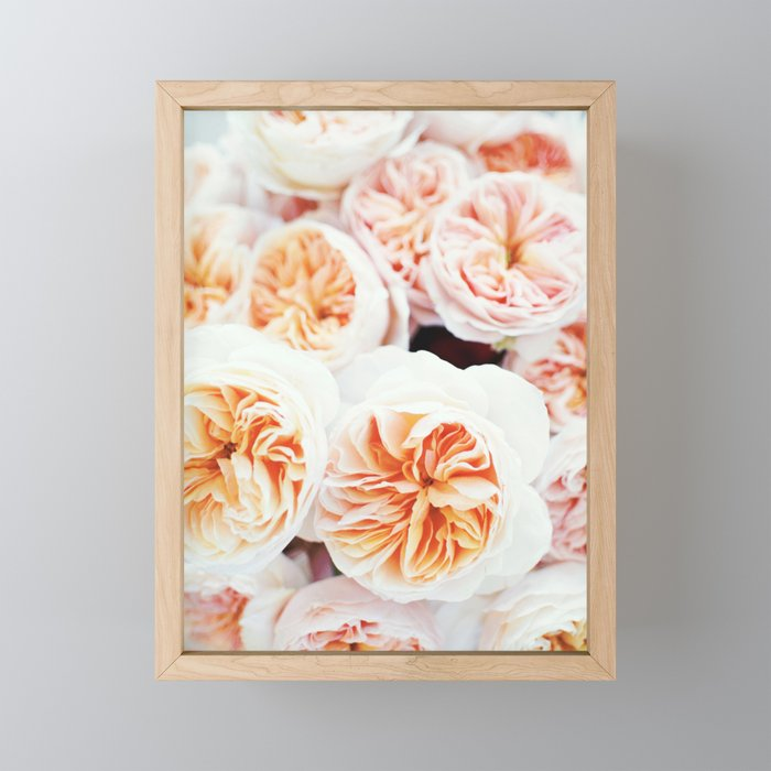 Garden Roses Framed Mini Art Print