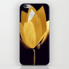 Gold and Silver iPhone & iPod Skin