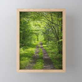 Trail Through Green Woods Framed Mini Art Print