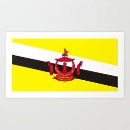 Brunei country flag Art Print