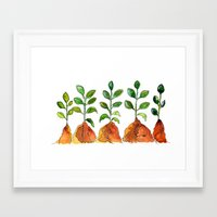 succulents Framed Art Prints featuring Succulents by Gosia&Helena